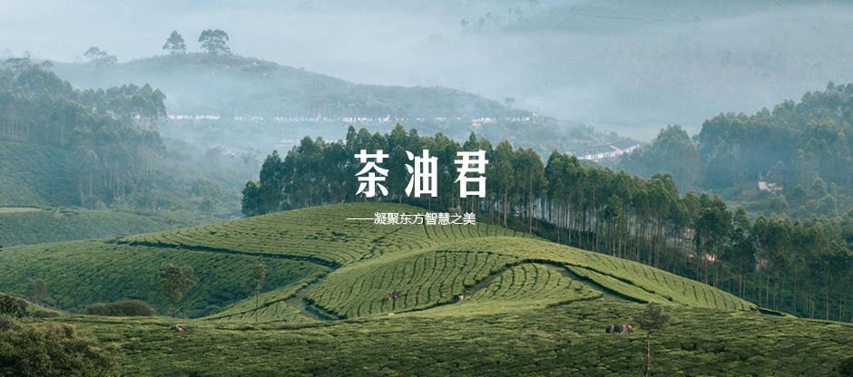 护肤品茶油君主视觉海报拍摄