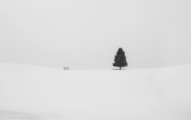 极简摄影有哪些技巧可言?