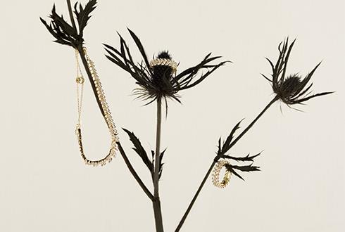 珠宝品牌创意拍摄